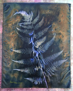 Wet cyanotype, Sue Reno, Image 21