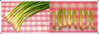 Kapalı Ortamda Yeşil Soğan  Yetiştirmek, Resimli Açıklamalı 1