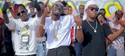 Ts-Gang Ft Sholo Mwamba - Dab Singeli Video