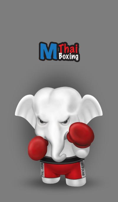 M.thai Boxing