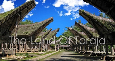 Alamat PT Pegadaian Di Enrekang, Toraja Dan Toraja Utara