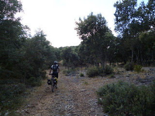 Camino de Monasterio