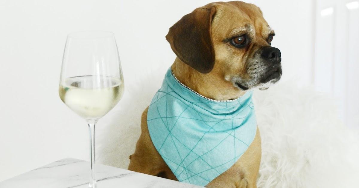 Easy DIY Reversible Dog Bandana Sewing Pattern
