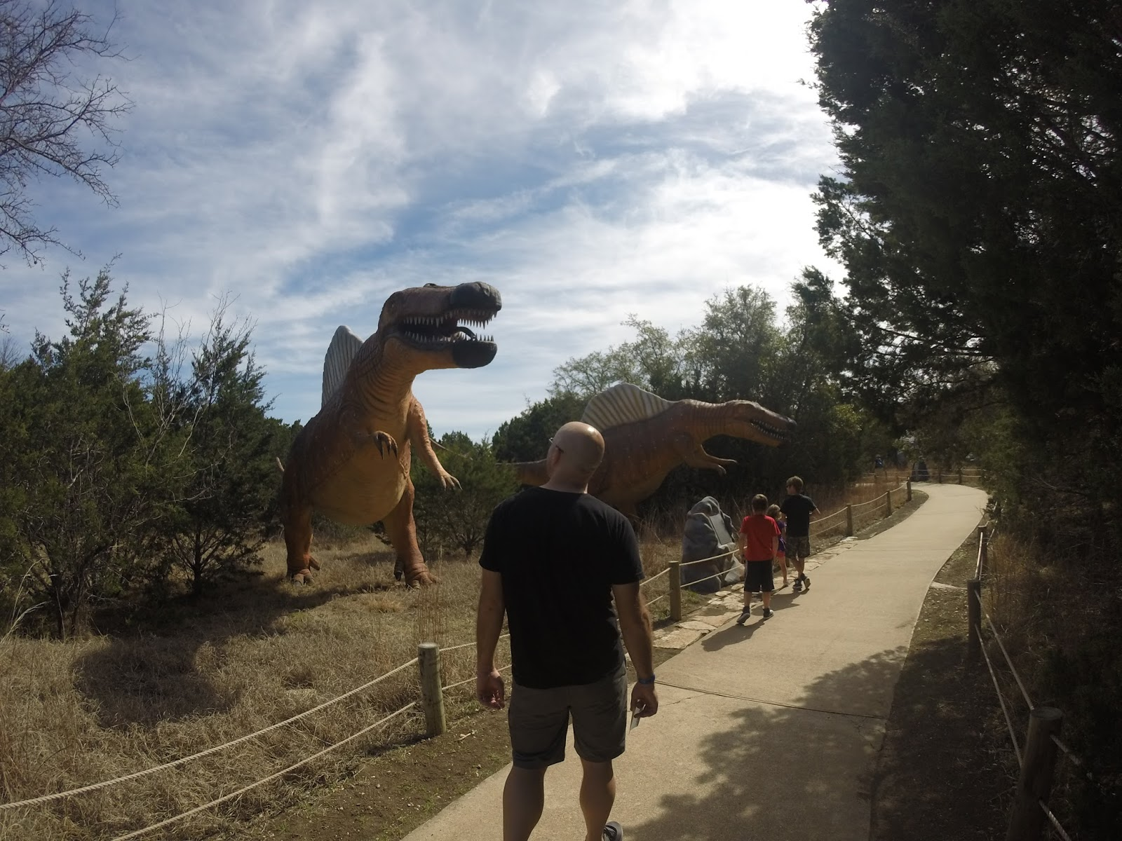 Coupons for fossil rim wildlife park