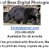 Son of Bear Photography