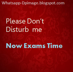 Im Busy Right Now Whatsapp DP Images