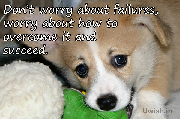 Motivational & Inspirational quotes with dogs e greeting cards and wishes