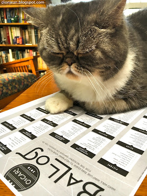 Popoki the cat with her Oscars voting form