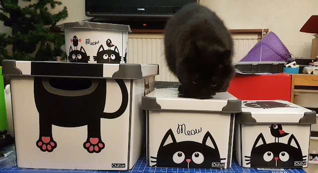 Black cat plastic storage boxes with lids in different sizes