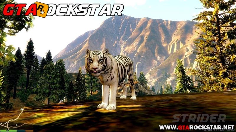 GTA V - Mod Tigre (Bengal Tiger) for GTA V PC