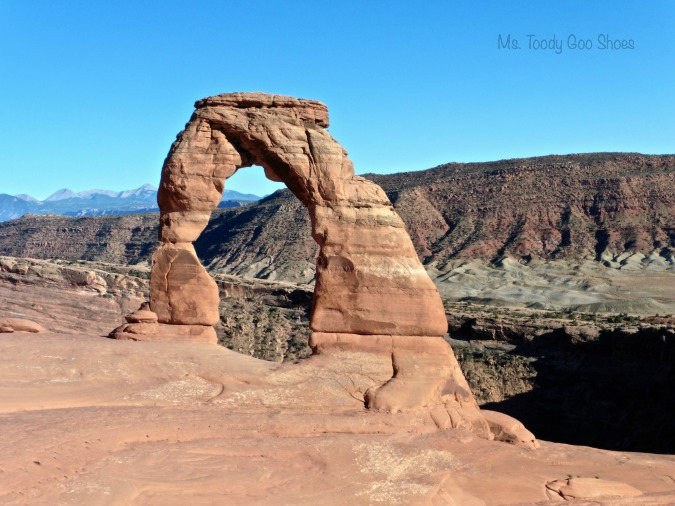 Delicate Arch, Arches National Park  --- Ms Toody Goo Shoes