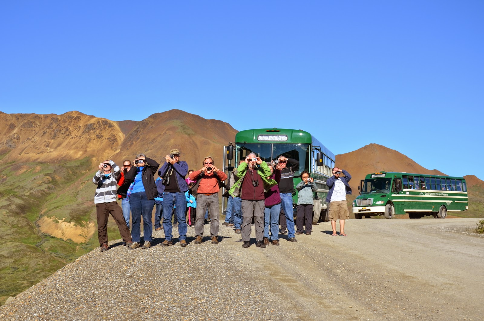 The Paparazzi of the Green Bus
