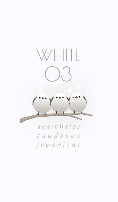 Aegithalos caudatus japonicus/White 03