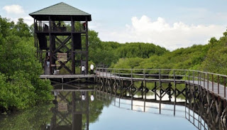 http://www.teluklove.com/2017/03/destinasti-objek-wisata-mangrove.html