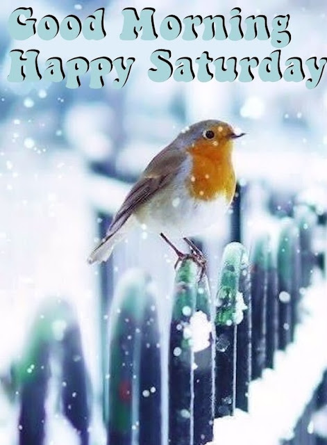 Happy saturday messages