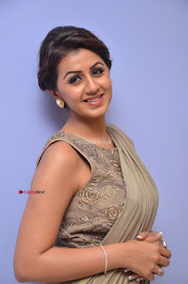Nikki Galrani in Saree 040.JPG