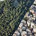 Νέα παρέμβαση του Περιφερειάρχη Ηπείρου για διόρθωση των Δασικών Χαρτών