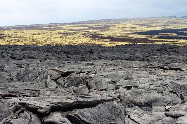 Terre volcanique Hawai