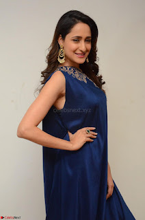 Pragya Jaiswal in beautiful Blue Gown Spicy Latest Pics February 2017 041.JPG