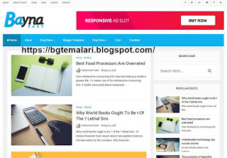 Bayna Fast Blogger Template