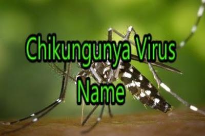 Chikungunya Virus Name