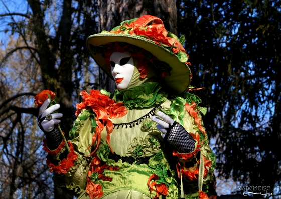 Carnaval vénitien d'Annecy 2017 - Photographie 21eme édition - Costume - Masque