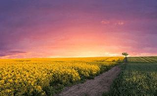 Puisi Motivasi Dan Inspirasi Untuk Masa Depan yang Lebih Baik