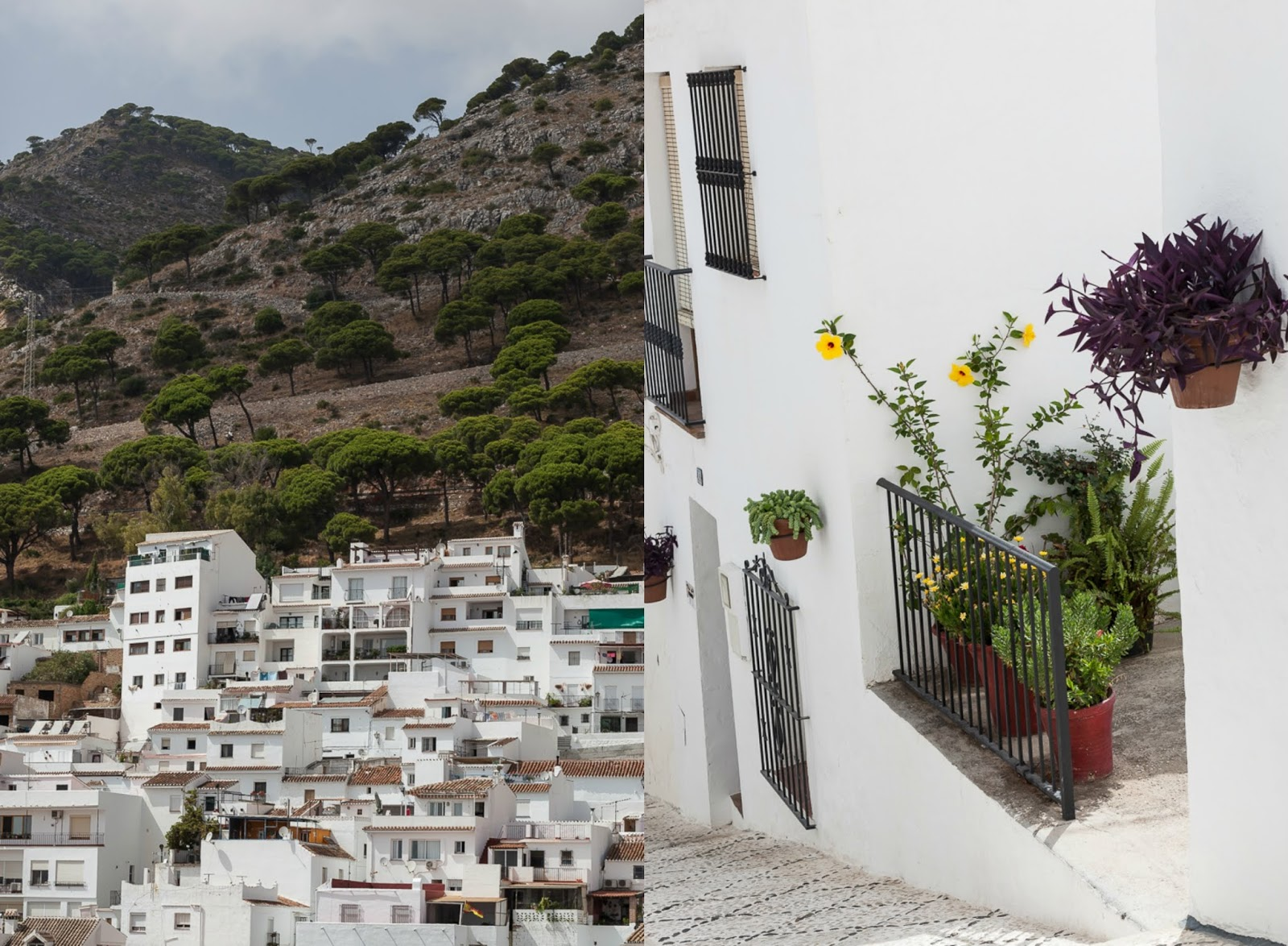 whitewashed houses of Mijas Pueblo
