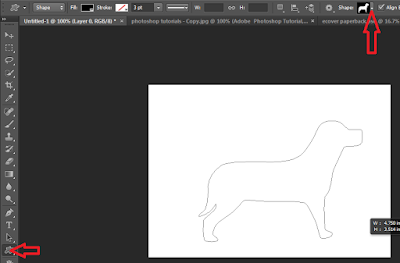 Screenshot: Drawing an irregular shape in photoshop