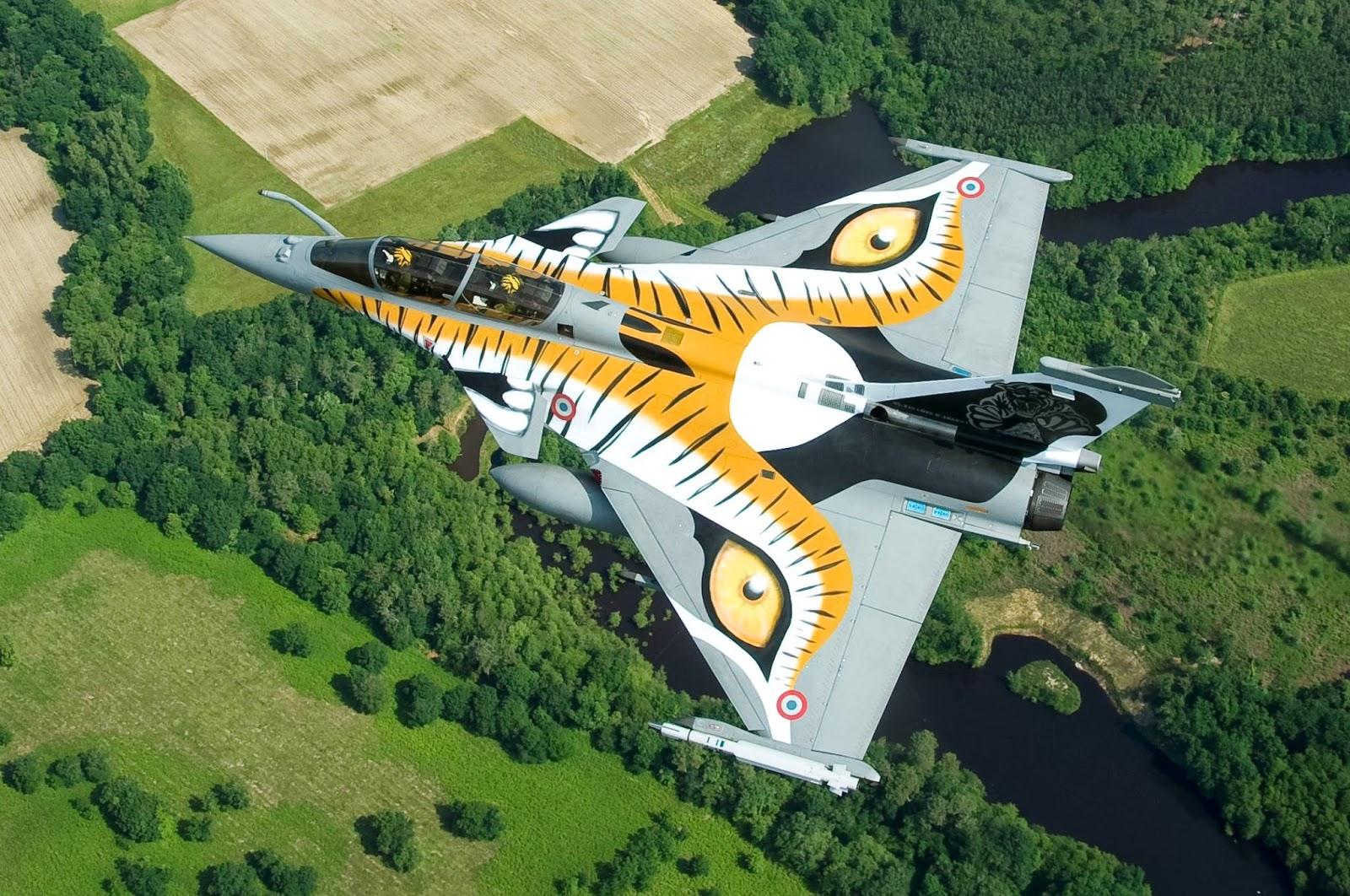 nato tiger meet 2013 rafale dassault