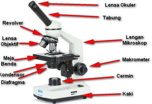 Bagian-Bagian Mikroskop Cahaya Monokuler Terlengkap