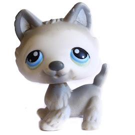 Littlest Pet Shop Small Playset Husky (#69) Pet