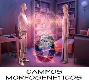campos morfogeneticos- constelaciones familiares