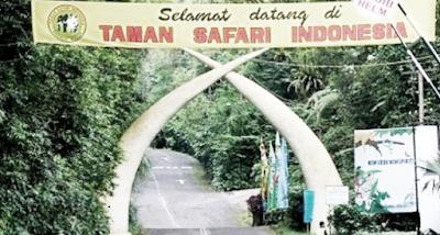 Objek Wisata Taman Safari Indonesia di Cisarua Bogor