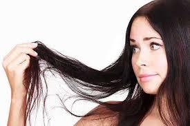 Prevent hair loss using herbs