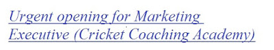 Urgent opening for Marketing Executive (Cricket Coaching Academy)