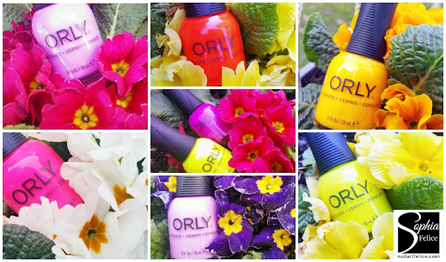 orly pch_01