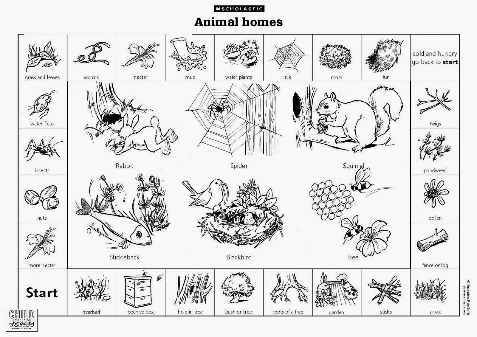 Where Do Animal Live For Gr2