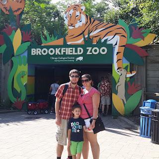 Zoo adventure essay