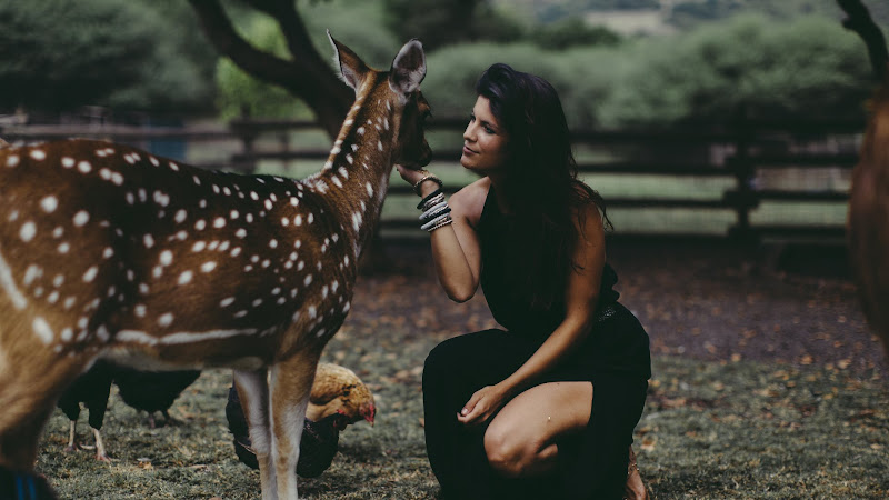 Lady and the Deer HD
