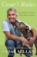 6 Books Your Dog Wishes You Would Read - The Best Resources For Puppy Raising or Dog Training - Cesar's Rules by Cesar Millan - via Devastate Boredom
