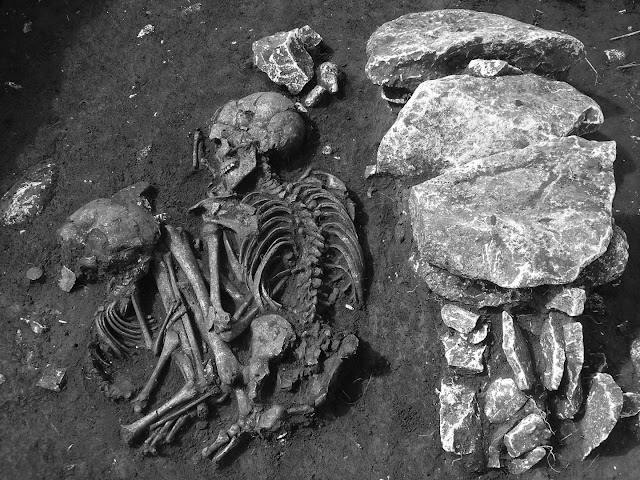 More on New research sheds light on prehistoric human migration in Europe