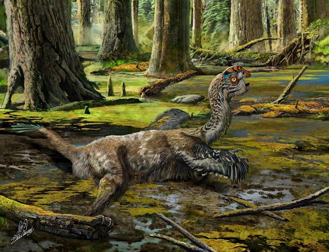 Dinosaur casts light on late burst of evolution