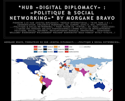 *HUB «DIGITAL DIPLOMACY» : «POLITIQUE & SOCIAL NETWORKING»*