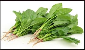 Inilah 8 Khasiat Sayur Bayam Dan Cara Mengolahnya Agar Tidak Beracun Bagi Tubuh