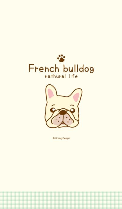 French bulldog -nathural life-