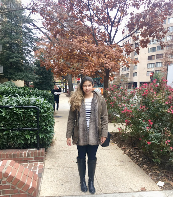 letmecrossover_blog_michele_mattos_blogger_usa_us_eua_washington_dc_house_of_cards_park_fall_winter_capitol_brasileira_brazillian_memorial_library_of_congress_zara_outfit_of_the_day_ootd
