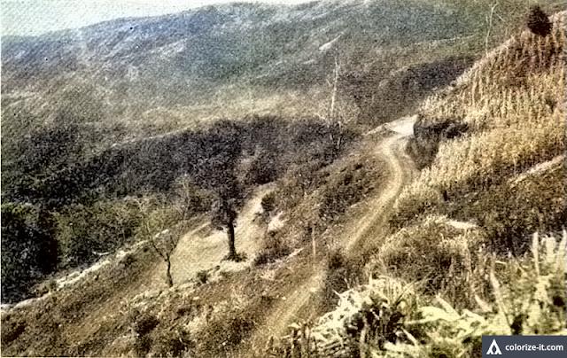 The steeply climbing Talisay-Tagaytay Road, built 1945.