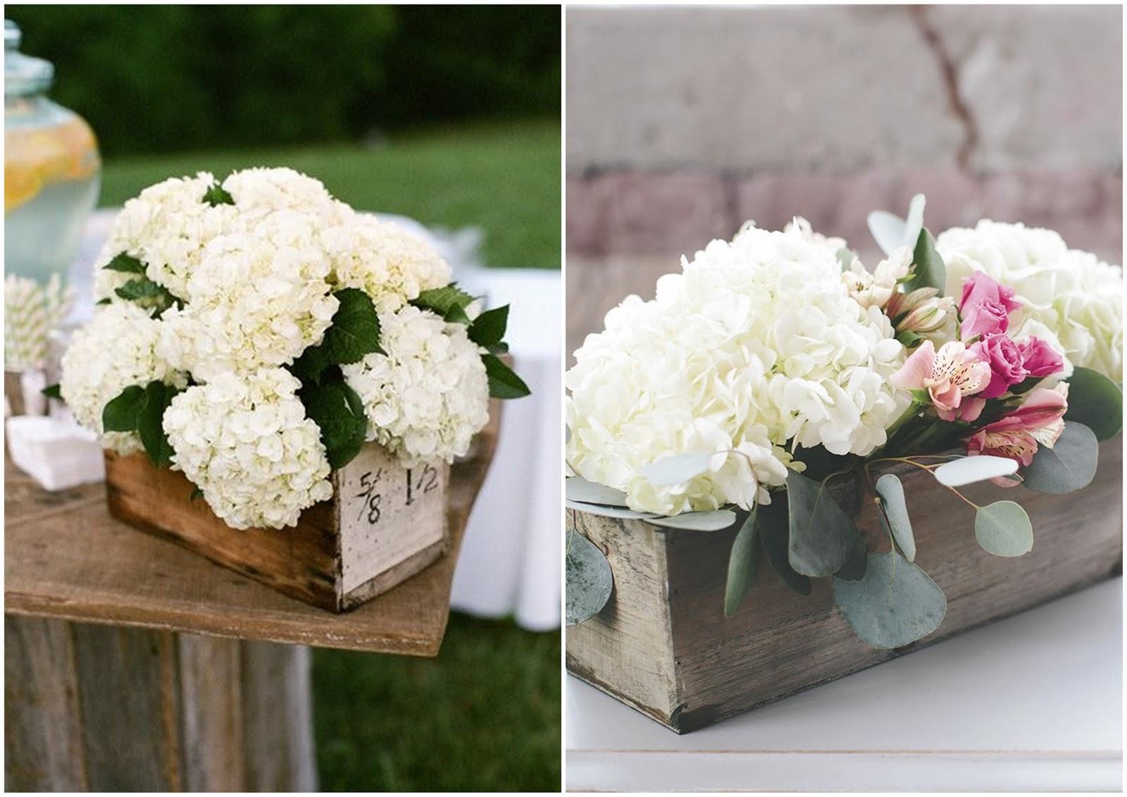 Matrimonio Azzurro Ortensia : Le stagioni dei fiori ortensia il mio fiore del mese di luglio