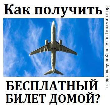 Как иностранцу получить бесплатный билет на Родину?